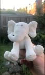 Close-up of Squeaky the elephant