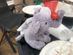 Saggy the cuddly elephant doing tricks with a tomato